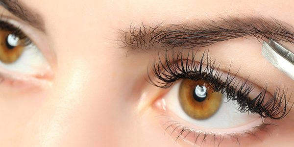 Lash and Brow Treatments